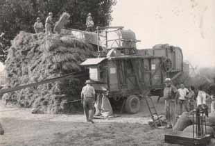 Sale used tractors multibrand of quality for over 10 years for Consorzio agrario piacenza trattori usati